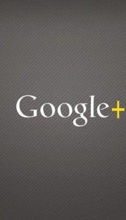 programr-google-plus