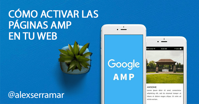 amp google activar